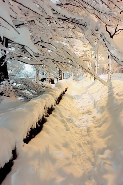 大雪1.JPG