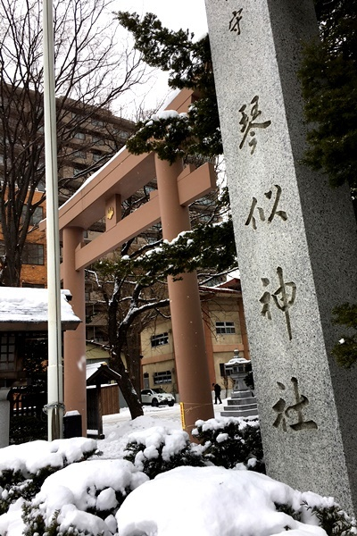琴似神社1.JPG
